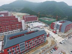 新建柳林中学